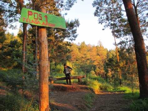 Wekas first Hiking Post