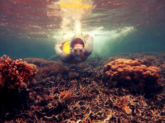 Learning Underwater Photography at Karimunjawa Archipelago